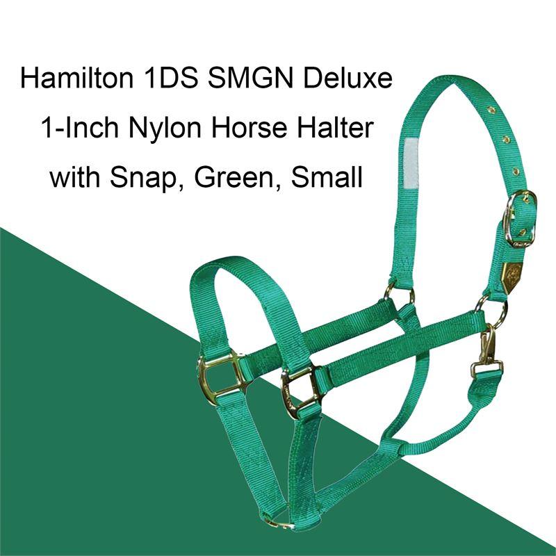 Hamilton 3//4-Inch Nylon Arabian Horse Halter with Adjustable Chin and Throat Snap